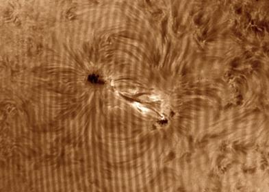 07. Juni 2013: AR 1765 in H-alpha