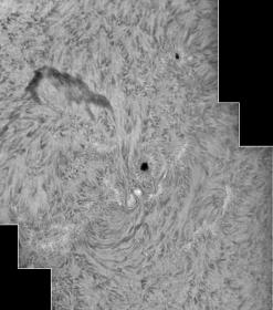 1. August 2012: AR 1529/30 H-alpha