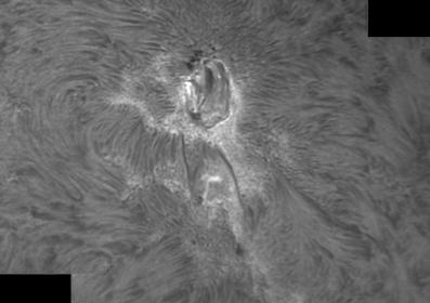8. September 2012 AR1564 in h-alpha