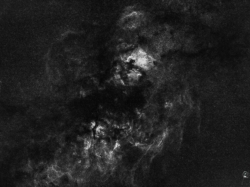 starless_17-10-14-cygnus-ha
