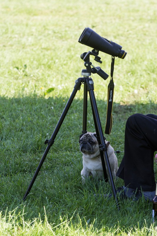 ITV 2015: Teleskop-Mops