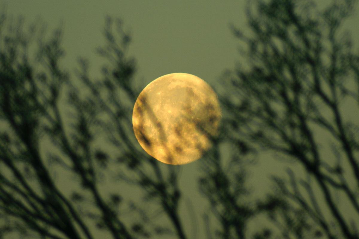 11. Januar 2012: Mond bei Sonnenaufgang