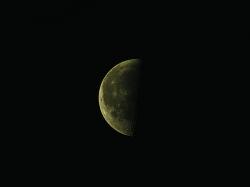 16. Januar 2012: abnehmender Mond am Morgen
