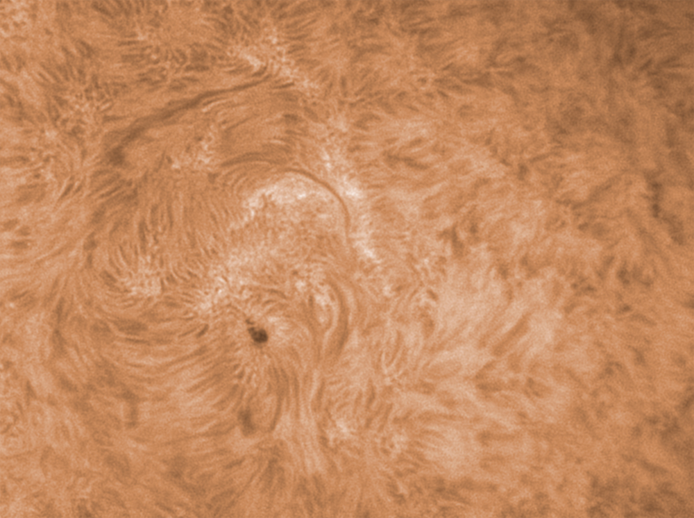 17. März 2012 h-alpha AR 1433