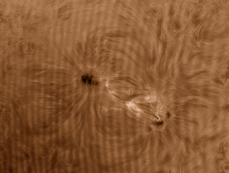 07. Juni 2013: AR 1765 in H-alpha