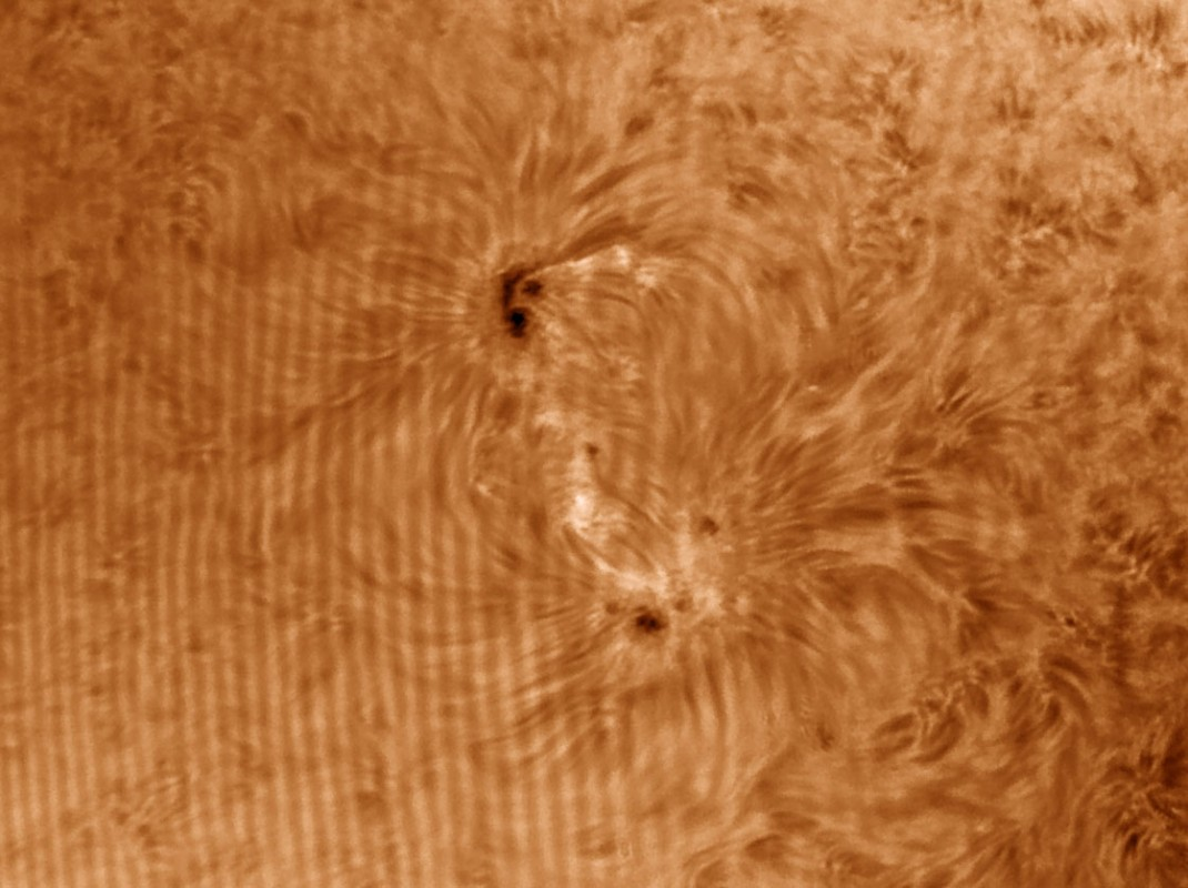 08. Juni 2013: AR 1765 in H-alpha