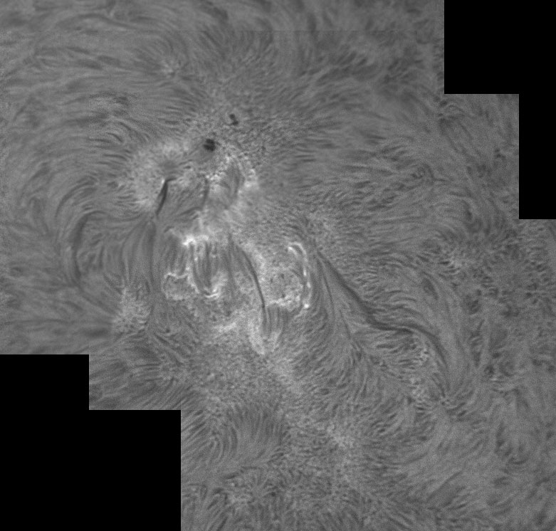 7. September 2012 AR1564 in h-alpha
