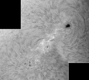1. August 2012: AR 1532/36 H-alpha