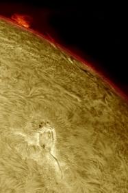 9. September 2012: AR 1562/64 in h-alpha