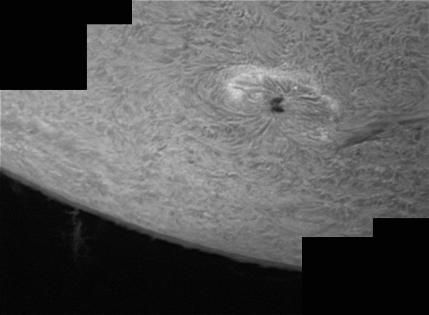 31. Oktober 2012: Sonnenfleck AR1598 h-alpha