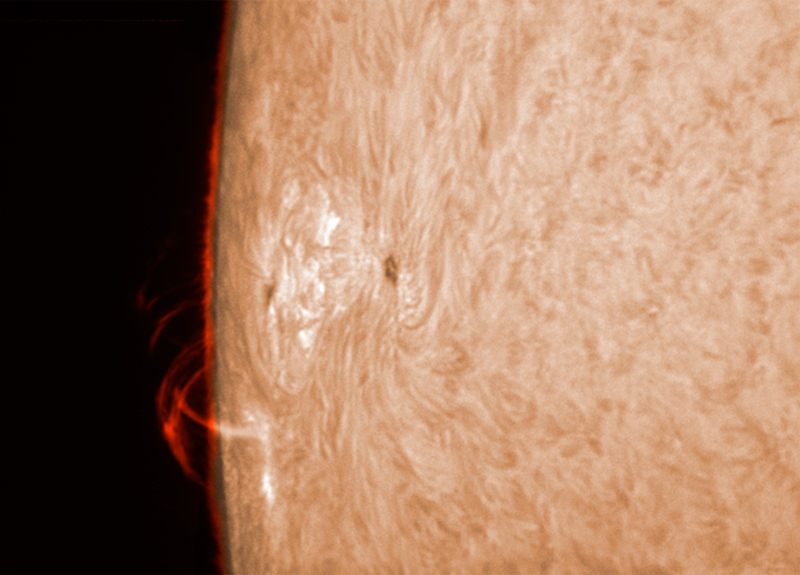24. März 2012 h-alpha AR 1445
