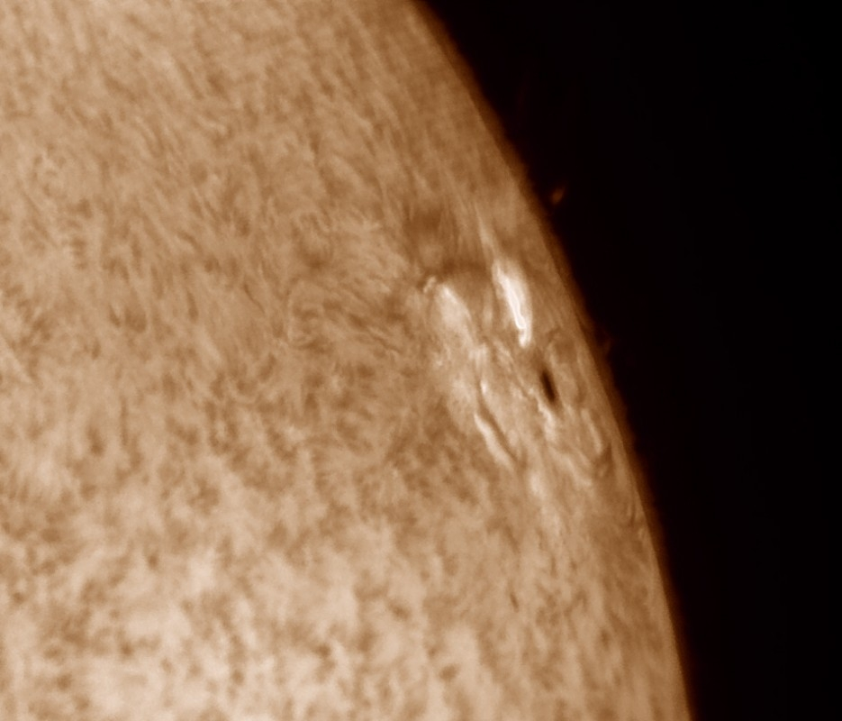 7. März 2015: AR2297 in h-alpha