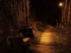 Wege in der Nacht