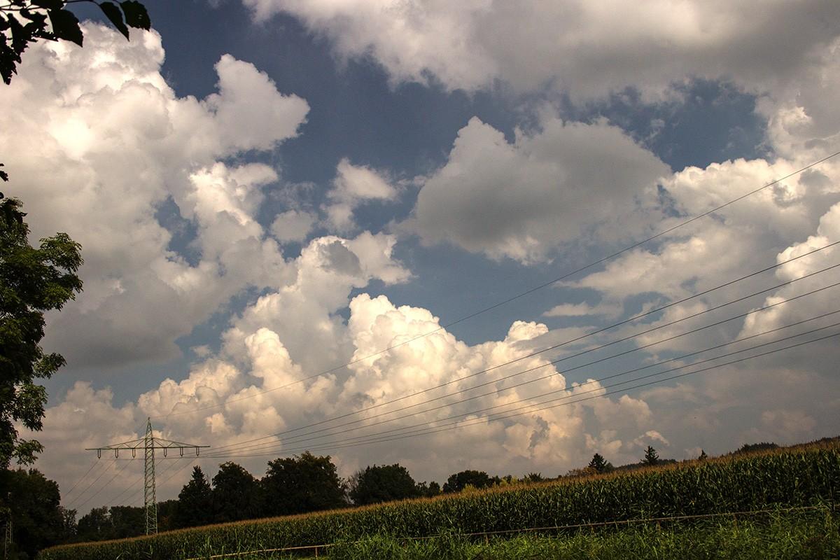 14-09-07-mundraching-IMG_2690.jpg